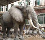 动物www.g22.com